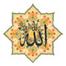 Shaykh Zulfiqar Ahmad (db)