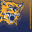 Wheelock College Basketball