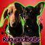Ruby & BeBe
