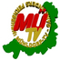 MdfTVStream