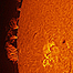 Large Prominence on the Sun
