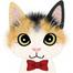 猫と地震情報@中野