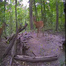 PixController.com Wildlife Cam 1