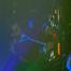 Xx2tonesxX live mix