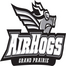 AirHogs Baseball