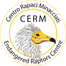 CERM Egyptian vulture