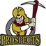 Edmonton Prospects Baseball
