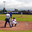 Crabs Baseball Webstream