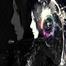 Niko Dj - Dj Kazman mezclas en vivo