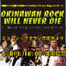 OKINAWAN ROCK WILL NEVER DIE 2013