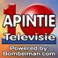 Apintie