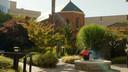 Ageless Gardens: Hospital Therapy Garden