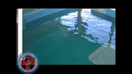 Winter the Dolphin Webcam 1/24/12 09:24AM PST