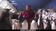 Andy Richter visits the Penguin Cam!