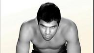 UFC 149: Faber vs Barao Preview