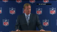 Goodell apologizes to NFL fans