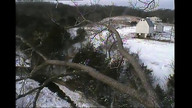 RRP Camera Ops panning captures P's in flight and on branch 12/26/12