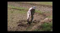 田起こし実習:谷戸田に学ぶ。農力向上大作戦!@寺家谷戸