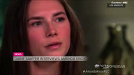 Video: The Biggest Moments From Amanda Knox's Interview With Diane Sawyer