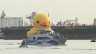Giant rubber duck sails into Los Angeles