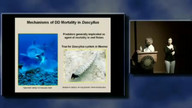 SCUBA Science: 40 CAUSES AND SCALES OF HETEROGENEITY IN DENSITY DEPENDENCE