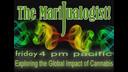 The Marijualogist w' Richard Karr 08-07-15