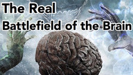 The Real Battlefield of the Brain