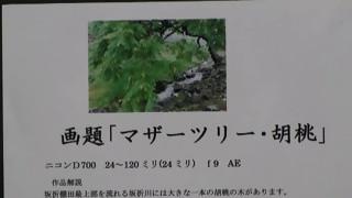 伊藤憲男写真展 小弓の庄