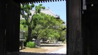 梶原忌前日1・興禅寺境内情景